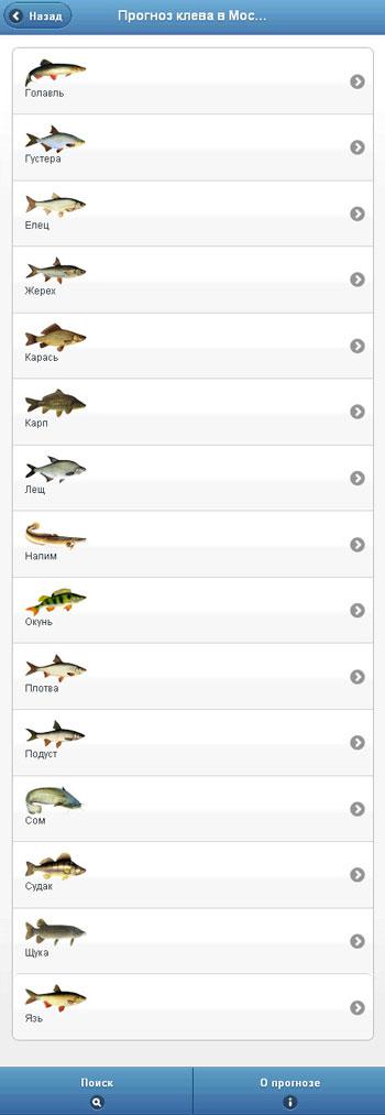 прогноз клева рыбы в ачинске чулым